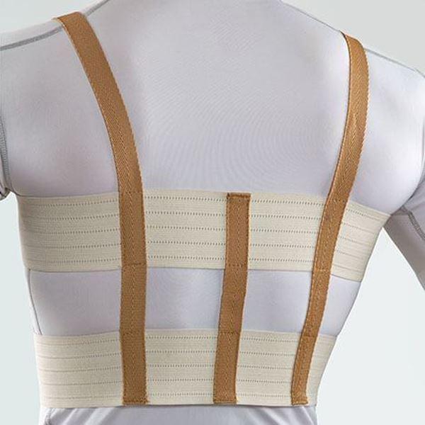 حمایت کننده قفسه سینه منفذدار پاکسمن