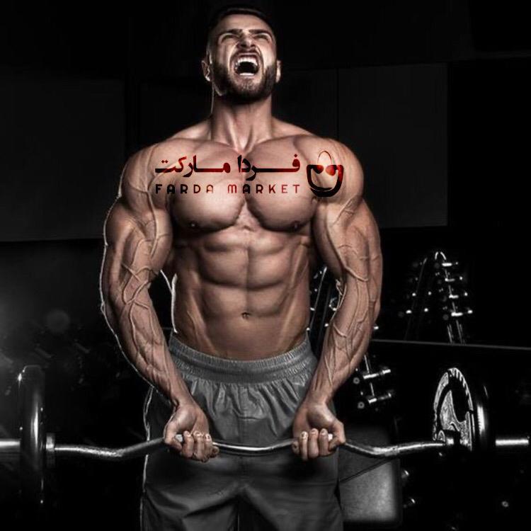 حجم عضله امینو پیلس